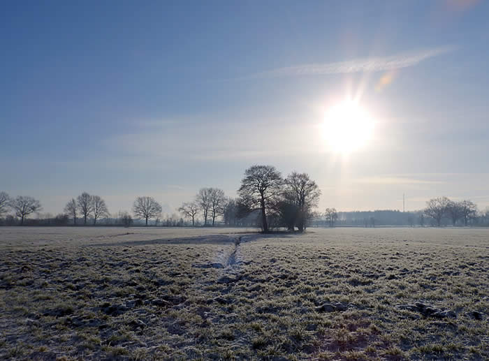 Januar Impressionen Feld im Morgenreif